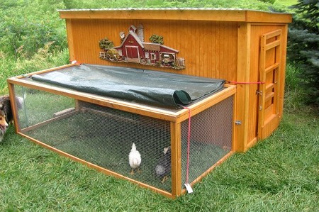 Chicken Coop1 How to Build a Chicken Coop